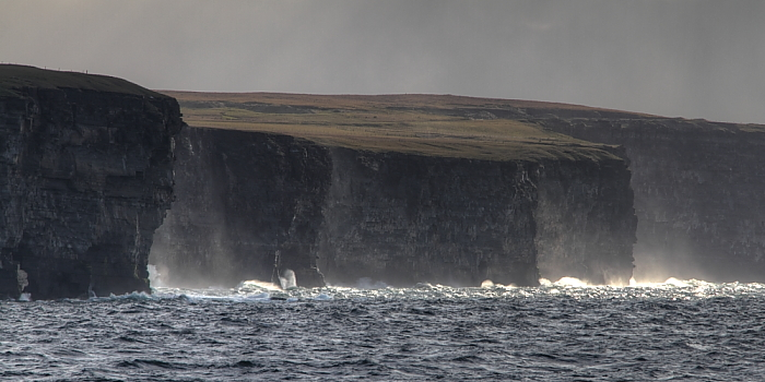 Cliffs of Caithness