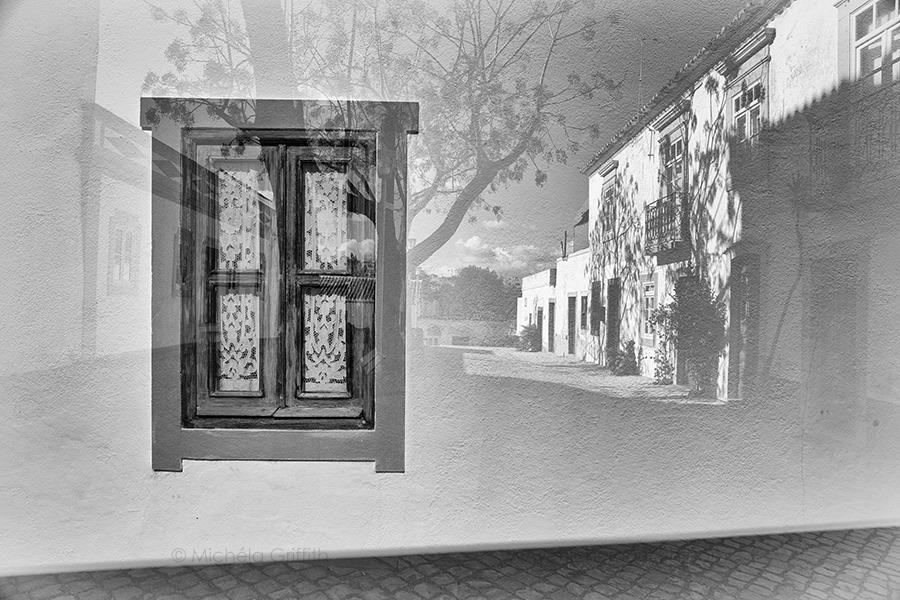View Through A Window II