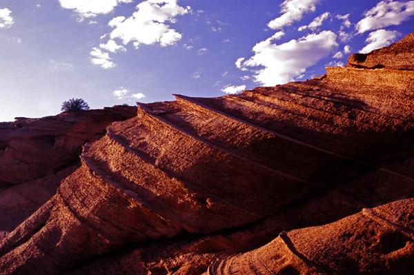 Roche torsadée - Page, Arizona