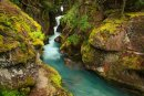 Avalanche Creek canyon