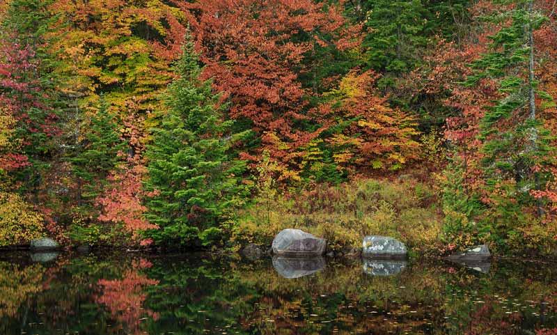 Couleurs d'automne et rochers