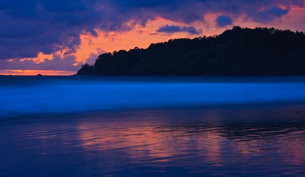 Coucher de soleil bleu et rose sur le Pacifique