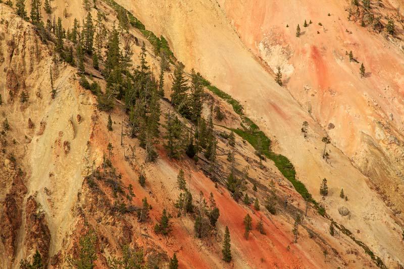 Grand Canyon du Yellowstone - Detail 3