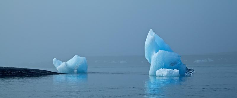 Icebergs échoués en bord de mer