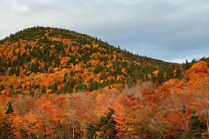 Montagnes de Saco Lake à l'automne