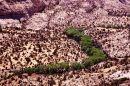 Rivière de vie - Hogback Ridge, Utah
