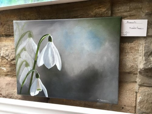 Snowdrops for Studio 61