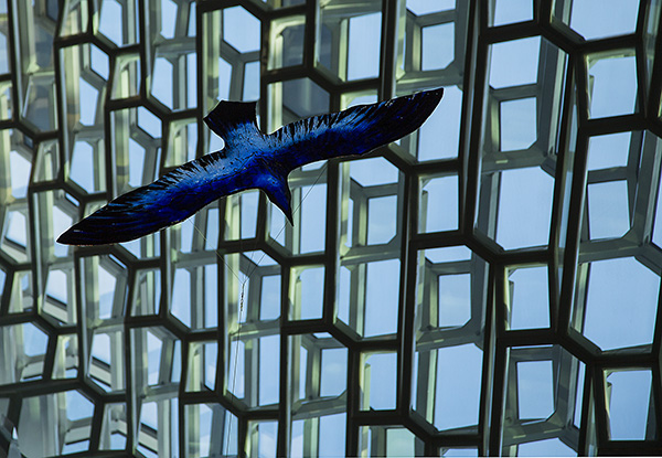 blue bird concert hall rekjavik