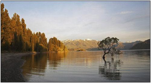 drowned willow lake wanaka