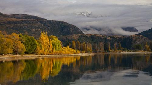 autumn near wanaka new zealand