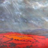 Light on Red  Fields  SOLD