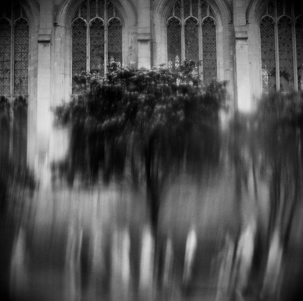 Tree and Church