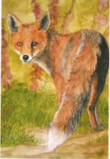 Mr Fox card
