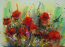 Poppies 3a