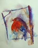 Robin Redbreast 1