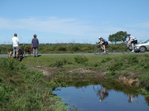 Dog-walkers and cyclists