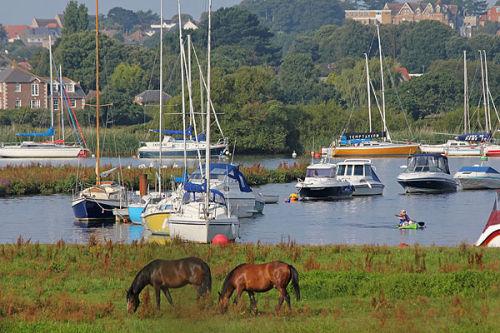 Ponies and canoeist