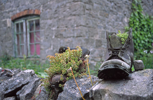 Boot on drystone wall