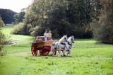 Wolds Cart 2