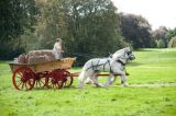 Wolds Cart 3