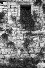 Window and Wall, Berat