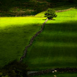 Bransdale Shadows mg 0012