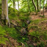 Bransdale brook mg 032
