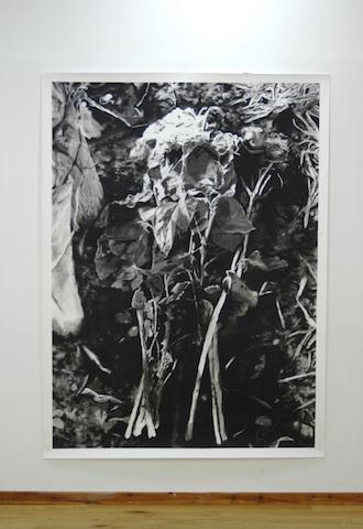 Grave by Matt Antoniak