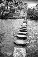 Darnholme steps