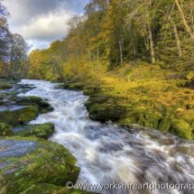 The Strid in autumn. Yorkshire dales, UK
