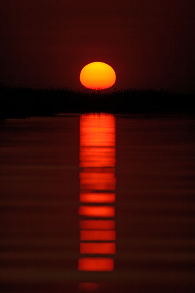Sunset over the Okavango River, Botswana