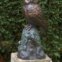 Tawny Owl bronze