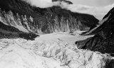 505-Fox Glacier