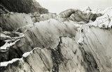 506-Fox Glacier