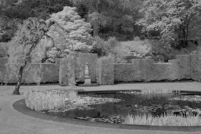 Pond and Sculpture IR