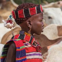 Bull jumping initiation ceremony - Hamar girl