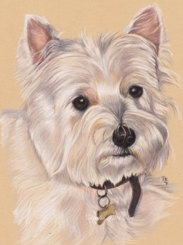 """6""""x8"""" coloured Pencil Portrait"""