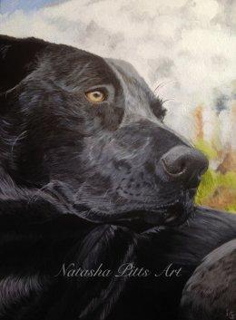 "Acrylic Painting 12""x16"" on canvas"