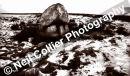 Arthurs Stone Snow Landscape 01