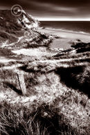 Three Cliffs Sepia Portrait (1)