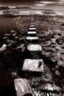 Three Cliffs Stepping Stones Sepia 01