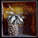 Tinned Pineapple