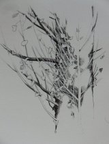 Winter Tree in Biro 25 x 20cm