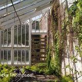 glasshouse V