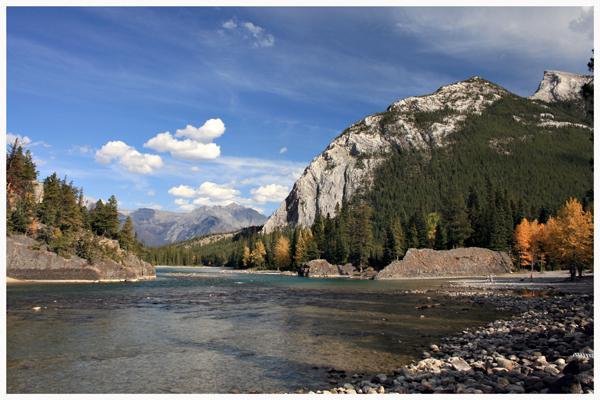 Bow River in The Fall