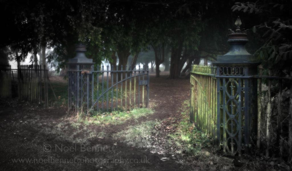 Gates To The Old Woods