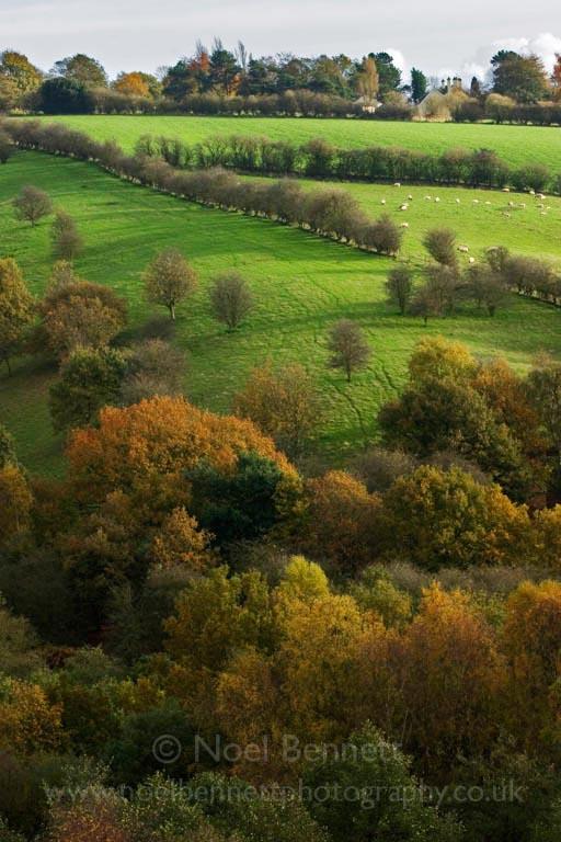 Autumn At Ford Farm