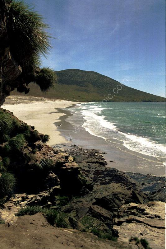 Saunder's Island The Neck North Beach