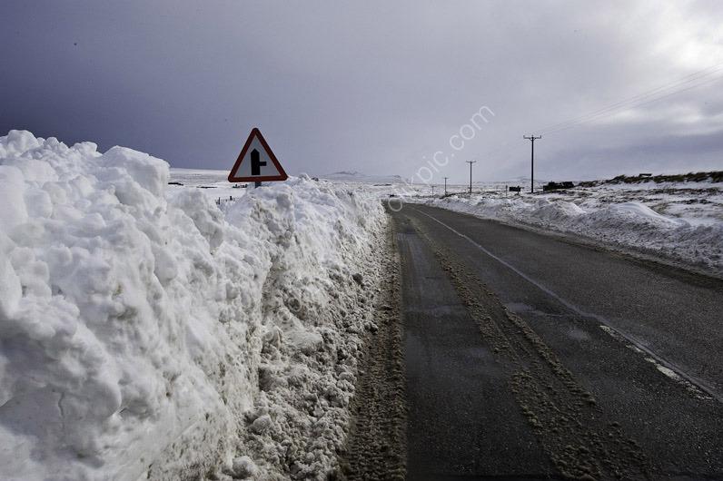 Snow Scenes-2