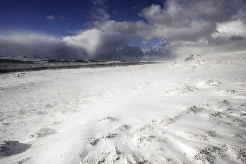 Snow Scenes-20